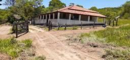 Fazenda na cidade de Rio Negro