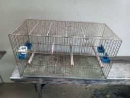Gaiola criadeira (Retirar em Nova Venécia)