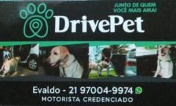 Drive Pet