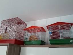 Título do anúncio: Gaiolas Hamsters