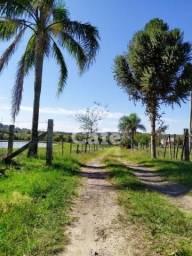 Chácara à venda com 3 dormitórios em Pinheiro machado, Santa maria cod:2666