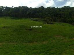Fazenda em Juiz de Fora-MG 94 hectares