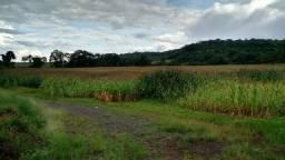 Rural - Invernada