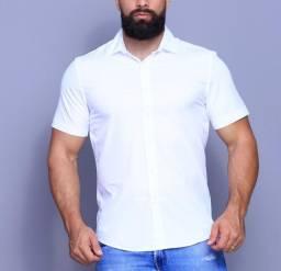Kit Com 5 Camisa Slim Fio Egípcio Manga Curta