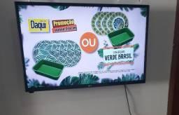 TV 32 Polegas