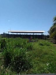 Título do anúncio: Fazenda à venda, por R$ 3.000.000 - Centro - Alta Floresta D'Oeste/RO