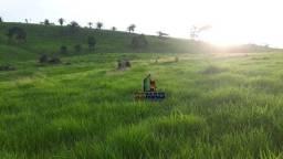 Título do anúncio: Fazenda à venda, por R$ 6.600.000 - Zona Rural - Monte Negro/RO