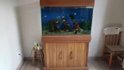 Aquario 350 Litros Completo com Fauna