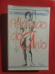 Livro Pela Mão do Anjo Dominique Fernandez