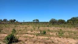 Fazenda 98 alqueires bruta em São Valério