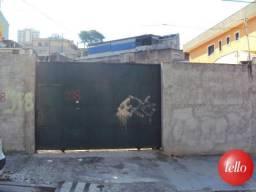 Terreno para alugar com 1 dormitórios em Vila formosa, São paulo cod:145020