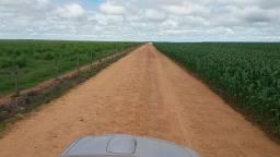 Fazenda 1.311 HECTARES, Dois Irmaos-TO, 500 hectares em lavoura