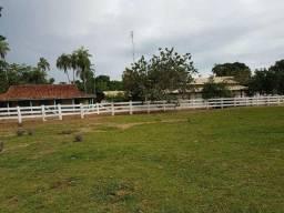 Cuiabá-Vend.4.000 mil P/ Hect=Porteira Fechada=Fazenda com 34.385 Hectares-Dupla Aptidão