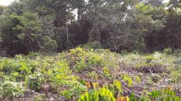 Troco por carro ou terreno em Manaus