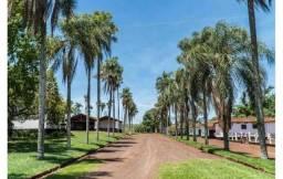 273 alqueires antiga fazenda de café - região Ourinhos - leia o anuncio