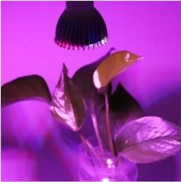 Título do anúncio: Lâmpada Led Grow 28w Cultivo Indoor / Estufa E27