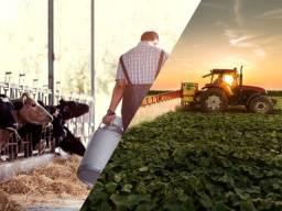Título do anúncio:  .´. Fazendas\Lotes\Terras\Maquinas\Sitios