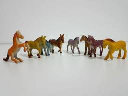 Miniaturas cavalos no estado