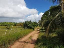 Granja Ceará-Mirim 3 Hectares, Escritura Pública, Água Franca, Energia Elétrica