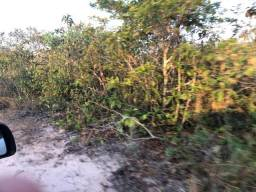 Ocasião, 1875,00 hectares,200 hectares aberta,cercada,Araputanga -MT, Trocoparte