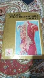 Livro atlas dos pés a cabeça
