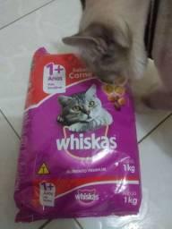 Vendo 7 pacotes Whiskas 1+ Anos Carne