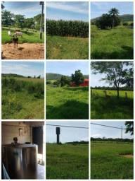 Vendo Fazenda 31 alqueires em Passos M.G sul de minas