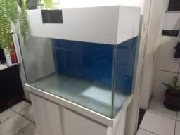 Aquario 200 L - 100X50X40cm