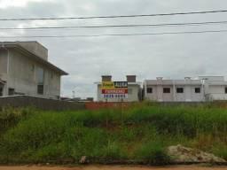 Terreno para alugar em Jardim sofia, Joinville cod:06951.001
