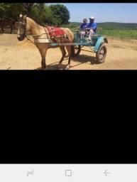 Cavalo e uma charrete