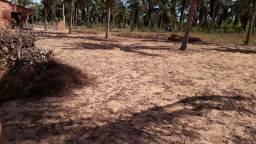 Vendo este terreno em mangue seco