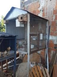 Vendo viveiro grande 1.20x1.20x1.50 feito de metalon e grade de metal galvanizado