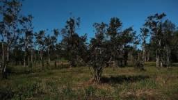 Título do anúncio: Terreno Estrada do Raminho , 3600 m²
