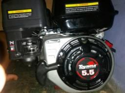 Vendo Motor À Gasolina 5,5hp 4 T refrigerador