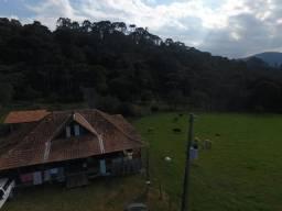 Título do anúncio: Sítio em Urubici/área rural /casa em Urubici