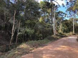 (Boa oportunidade) Chacara em Bocaiuva do Sul medindo 2000m²