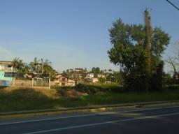 Terreno para alugar em Floresta, Joinville cod:06772.001
