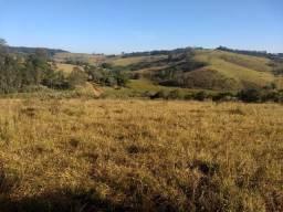 Alugo: Terreno BR 381