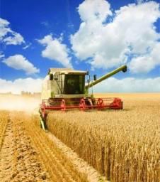 Título do anúncio: MSB - Crédito Rural