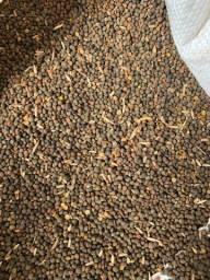Ervilhaca Avica mix Centeio