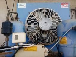 Motor(compressor) resfriador câmara fria Danfoss MT40