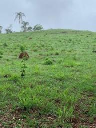 Terreno Em Piranga Área Rural Região do Angu 15 hectares Com Muita Água Sítio Fazenda Gado