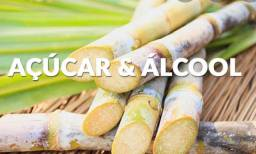 Açúcar IC45 exportação