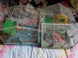 Gaiolas para hamster semi novas