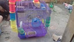 Gaiola de hamster $120.00 usada negociável