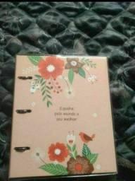 Título do anúncio: Vendo Caderno Argolado Fina Ideia