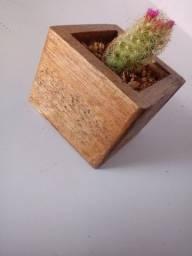 Título do anúncio: Vasos em madeira