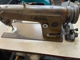 máquina de costura industrial reta - Columbia