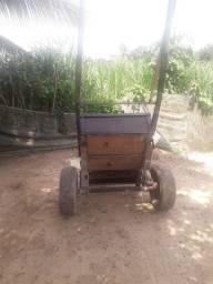 vendo uma carroça muito boa e vendo um burro mula com dois anos e três meses
