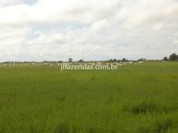 Fazenda em Campos dos Goytacazes/RJ 4356 hectares